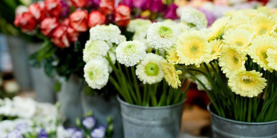 La Signature : fleuriste et articles décoration