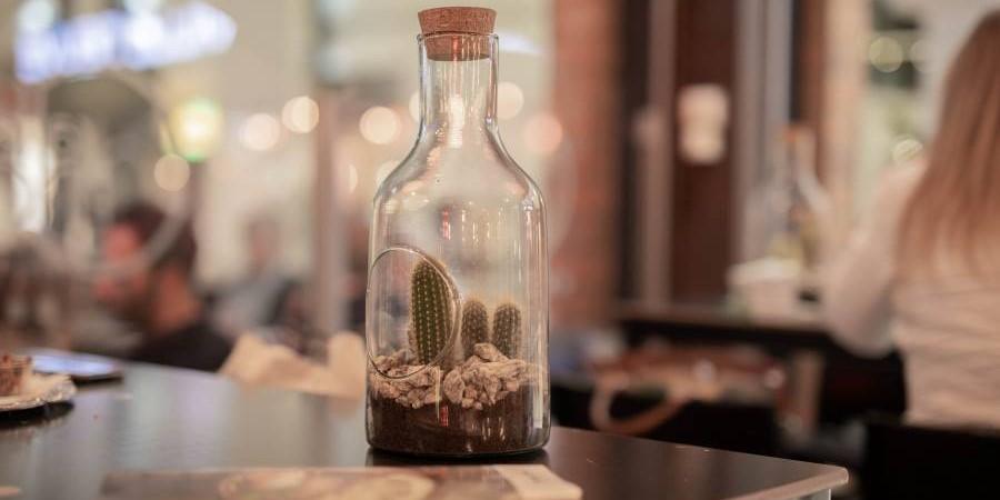 Willy's Café : Taverne, brasserie, petite restauration & plat du jour.